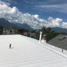 Delta Roofing