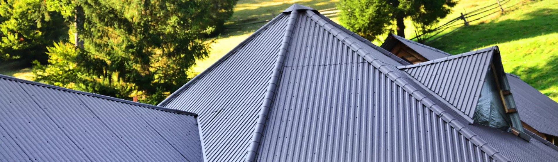 Roof repairs delta